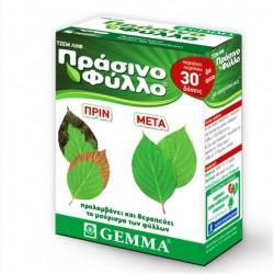 Πράσινο Φύλλο (Δώστε πράσινο χρώμα στα κιτρινισμένα φύλλα)