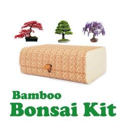 Μπονσάι Σετ Καλλιέργειας / Δώρου Με Κασελάκι Bamboo!