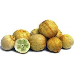Αγγούρι - Λεμόνι Κρύσταλλο - 10 Σπόροι