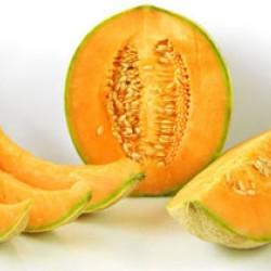 Πεπόνι Galia/Γκαλια (cucumis melo) 4,5γρ σπόροι Πεπονιού