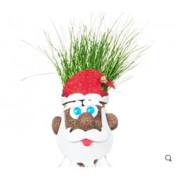 Δώρο Χριστουγέννων Πατατοκέφαλος Αϊ Γρασίδας! Μαλλιά από γρασίδι!