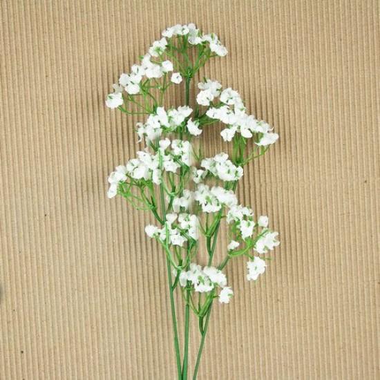 Γυψοφίλη Λευκή/Ακροάστια Σπόροι 2,5γρ. Γυψοφίλης
