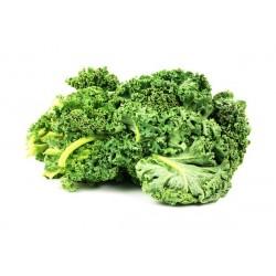 Kale/Κέιλ (Λαχανίδα-Σέσκουλο) 40+ σπόροι