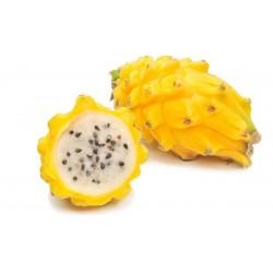 Πιτάγια κίτρινη φρούτο του δράκου  (Pitaya) – 10 Σπόροι