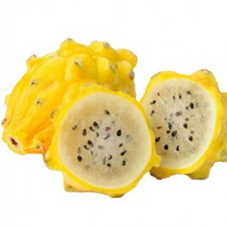 Πιτάγια κίτρινη φρούτο του δράκου  (Pitaya) – 6 Σπόροι