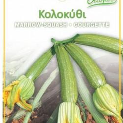Κολοκυθάκι (Zucchino/Marrow Squash) με ανθό 5γρ.