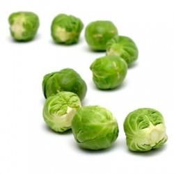 Λαχανάκια  Βρυξελλών 5γρ Σπόροι
