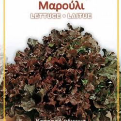 Μαρούλι κόκκινο κατσαρό - πακέτο σπόρων 7 γραμ