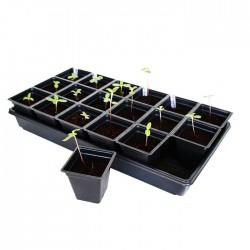 Γλαστράκια Σπορείου x 5τεμ. -  Ξεκινήστε τα Φυτά σας