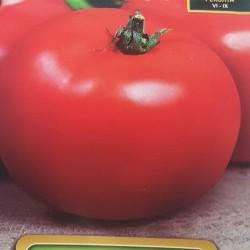 Ντομάτα Milyana Beefsteak Κόκκινη 15 σπόροι