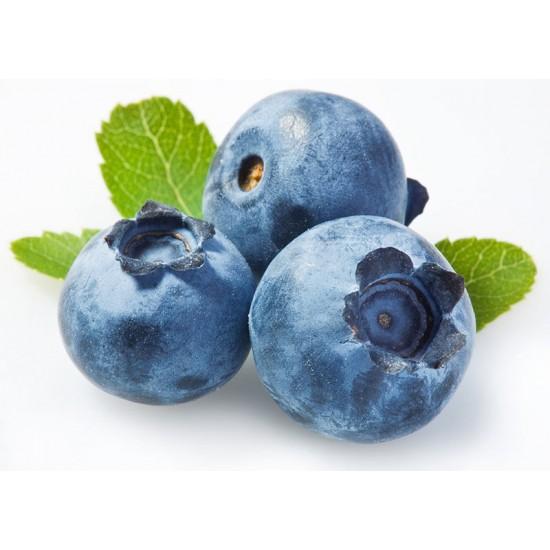 Μύρτιλο (blueberry) - φυτό 30 εκ. (Vaccinium corymbosum 'Jersey')