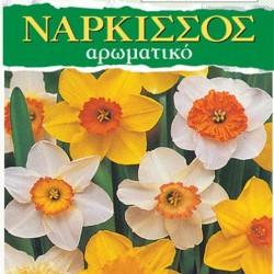 Νάρκισος Ανάμικτα Χρώματα 3 Βολβοί