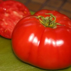 Ντομάτα Delicious Οργανική Τεράστιο Μέγεθος - 20 Σπόροι