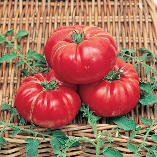 Ντομάτα Soldacki Παραδοσιακή 15 Σπόροι