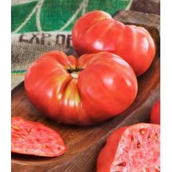 Ντομάτα Beefmaster f1 Μεγάλη 15 Σπόροι