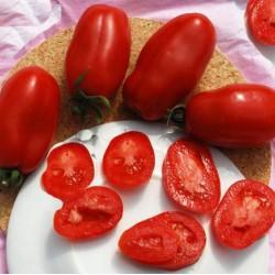 Ντομάτα Marzano 2 - 1γρ. Σπόροι