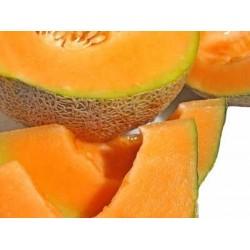 Πεπόνι Κανταλούπε/Cantaloupe 4,5γρ σπόροι Πεπονιού