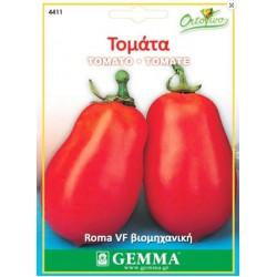 Ντομάτα Roma/Ρομα VF Βιομηχανική 1.5γρ Σπόροι