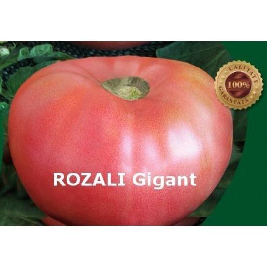 Πελώρια Παραδοσιακή Ροζ Ντομάτα Βουλγαρίας 1,5kg  -  0,5γρ Σπόροι