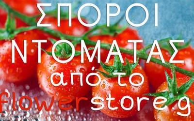 Σπόροι Ντομάτας Από το Flowerstore.gr