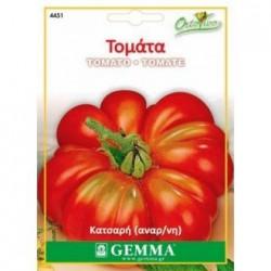 Τομάτα, Ντομάτα Κατσαρή (lycopersicon esculentum) Σπόροι 1γρ