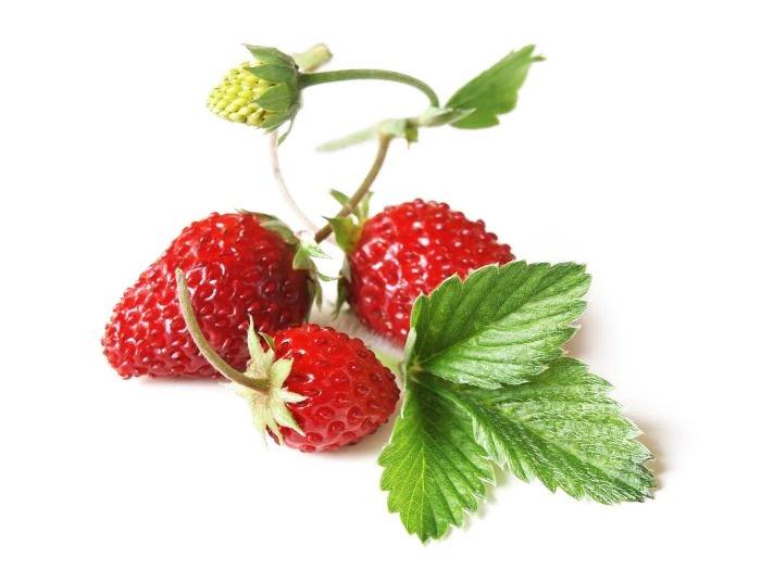 φράουλα κόκκινη